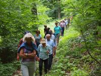 Waldführung-20150613-142621