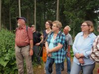 Waldführung-20150613-153305